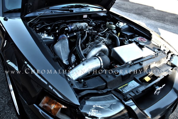 Staphani's 2003 Mustang GT Engine